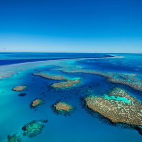 Hardy Reef, Great Barrier Reef (5).jpg