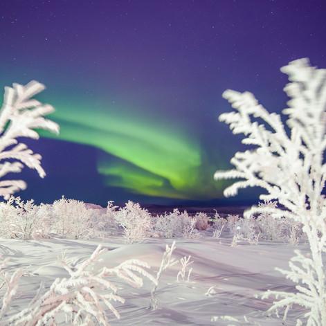 Midnattssolstigen, Sweden