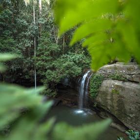 Buderim Falls, Sunshine Coast (3).jpg