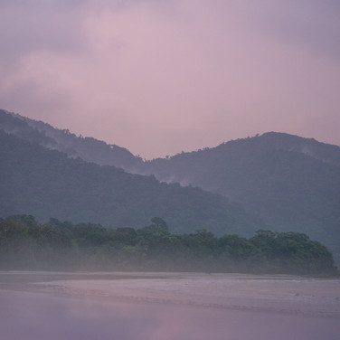 Cape Tribulation + Myall Beach (1).jpg