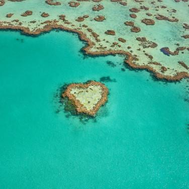 Heart Reef, Queensland.jpg