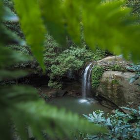 Buderim Falls, Sunshine Coast (1).jpg