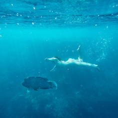 Maggie + The Mermaid