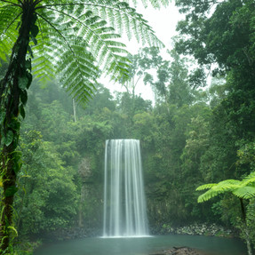Waterfalls - Atherton Tablelands (4).jpg