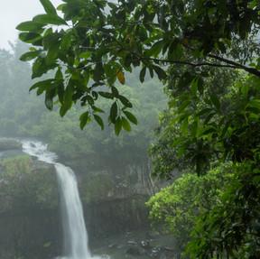 Waterfalls - Atherton Tablelands (9).jpg