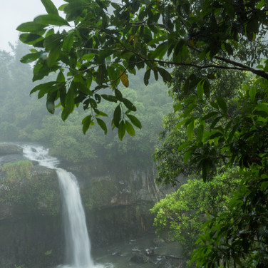 Waterfalls - Atherton Tablelands (9).jpg