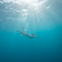 The Mermaid: Hardy Reef - Great Barrier Reef, Australia