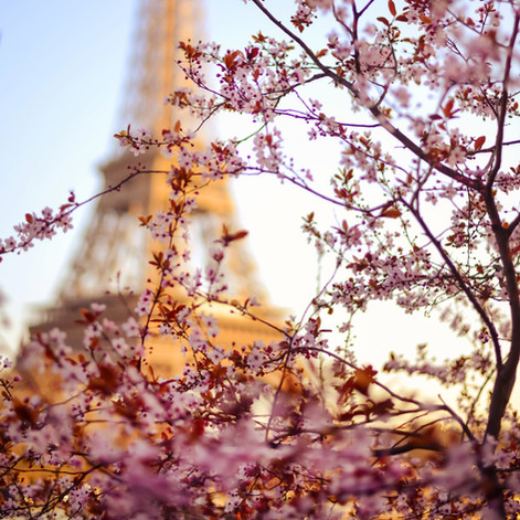 Printemps en Paris