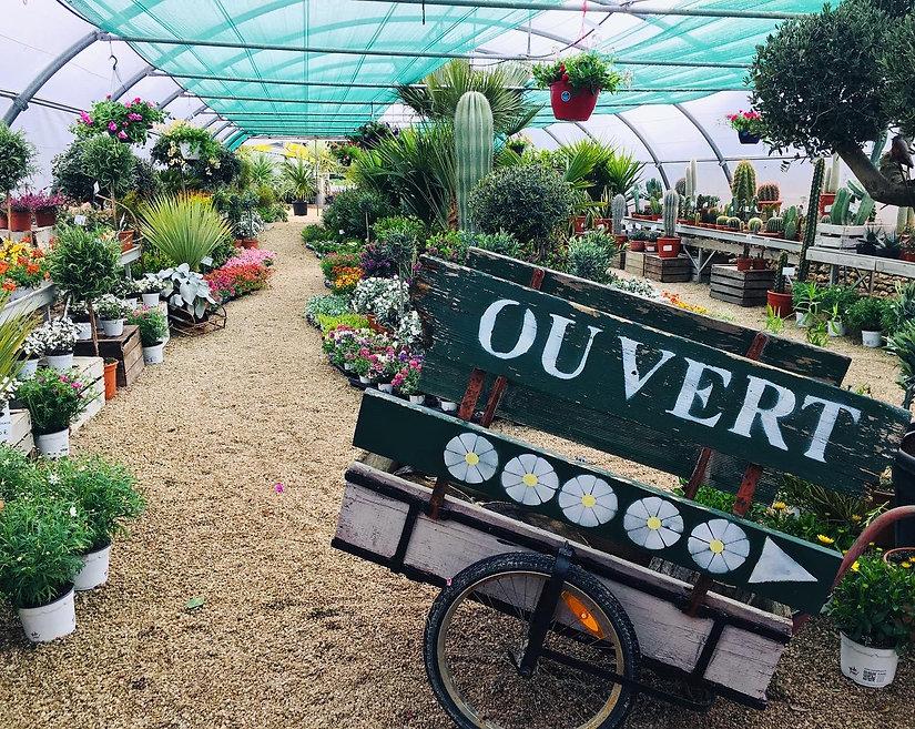 Pépinière Les Jardins de Suzanne
