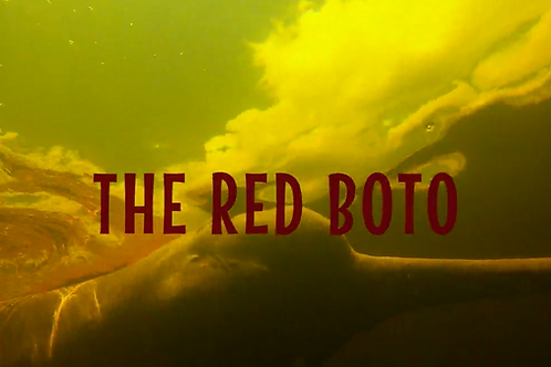 THE RED BOTO SAT.  7.31.21 2:30PM BLOCK