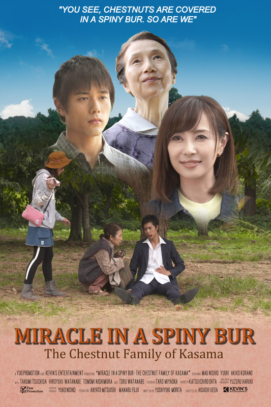 Miracle in Spiny Bur HDIFF-poster 2