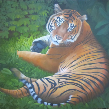 Rory's Tiger