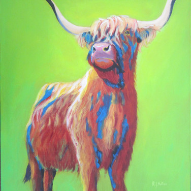 Psychedelic Cow