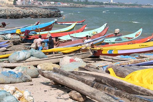 Kerala Fishing 2