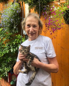 Glynis volunteer at Birmingham cat rescu