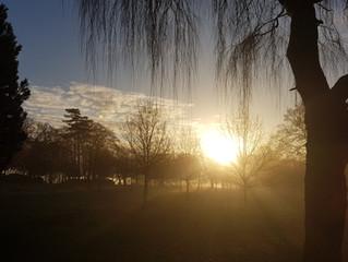Misty mornings in Harborne