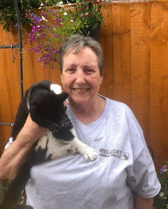 Anita volunteer at Birmingham cat rescue