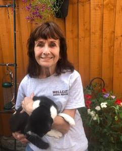 Chris volunteer at Birmingham cat rescue