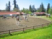 Signature West Farm outdoor arena