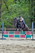 Tracy jumping horse