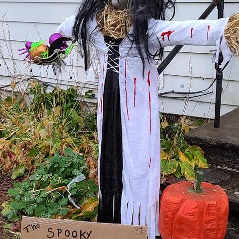 Scarecrow No. 5