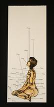 Anatomy of a Modern Woman, Figure 3