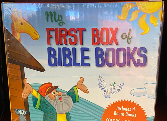 FIRST BIBLE BOOK