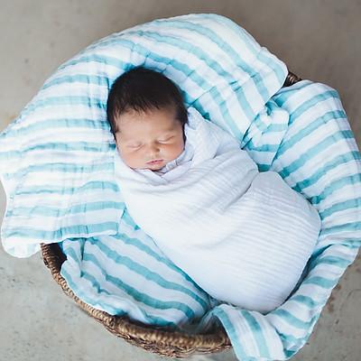Baby James McLane