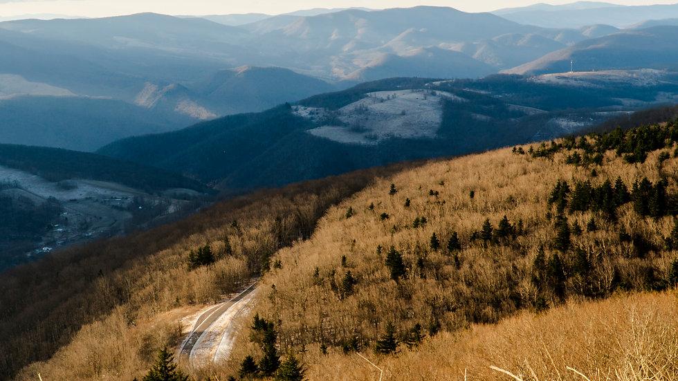 Winter Road Vertical