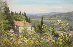 ,,Цветы Тосканы,, х.м 65х100 2016г.