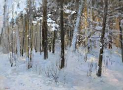 ,,Битцевский лес,, х.м 45х60 2019г.