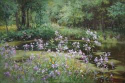 ,,Лесные цветы,, х.м 40х60 2012г.