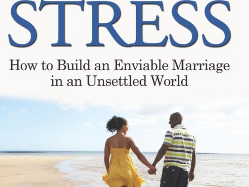 Marriage Without Stress | Chapter 3