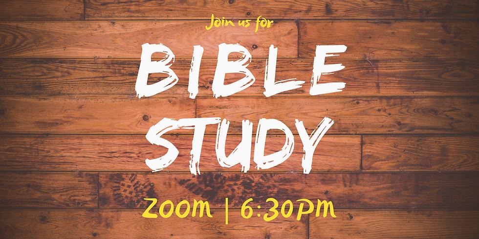 Bible Study / Prayer Meeting