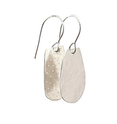 Speck and Solid Earring
