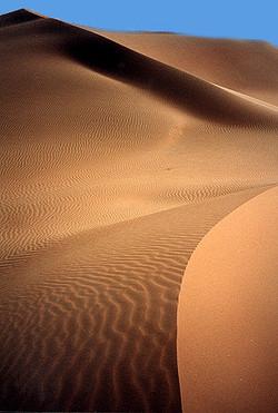 dunes-7.jpg