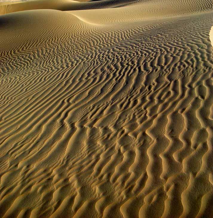LIWA-2007003-cropped.jpg