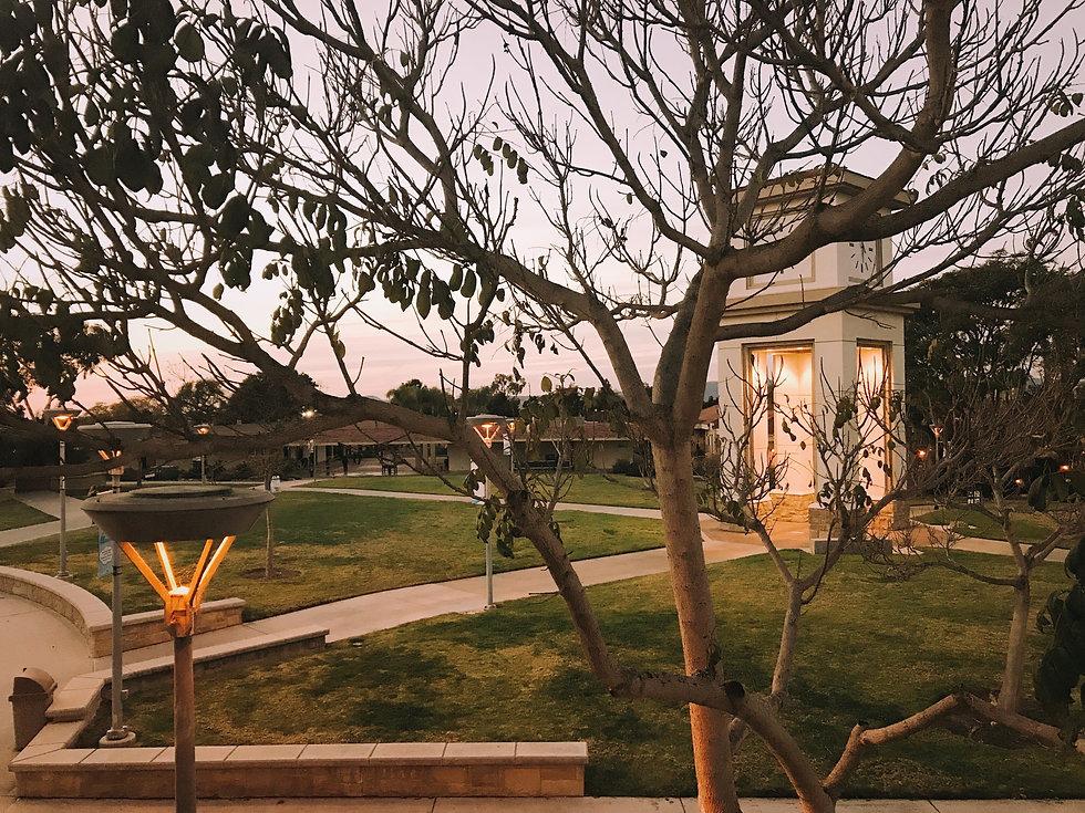 Campus pic.jpg