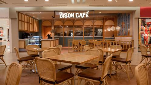 Bison by MyNews