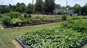 Highland Community Garden