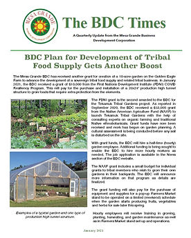 MGBDC NEWSLETTER, JAN  2021 copy_Page_1.