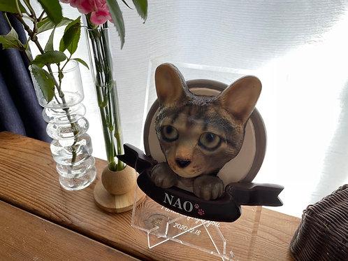 造形メモリー猫(アクリル附属)