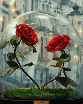 手作坊-瓶中玫瑰