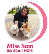 miss_sum_profile.jpg