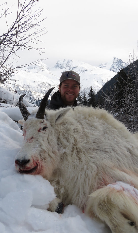 Miller's Outdoors | Hunting Trips in Canada | Big Game Hunting Rates – Mountain Goat Hunting Rates