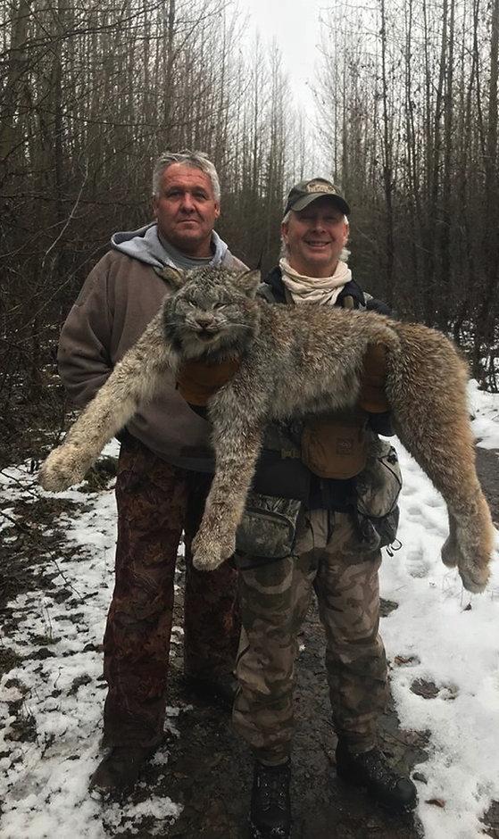 Miller's Outdoors | Winter Predator Hunts in Canada | Big Game Hunting Rates – Winter Predator Hunting Rates