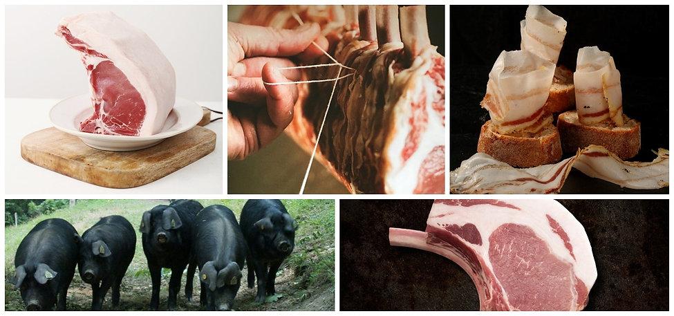 porc noir de bigorre 6.jpg