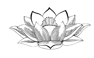 sacred logo lotus only.png