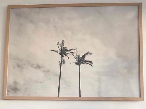 Large Feature Fine Art Twin Palms by Jessica Ross