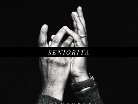 Paddyguerro - Seniorita (Audio)